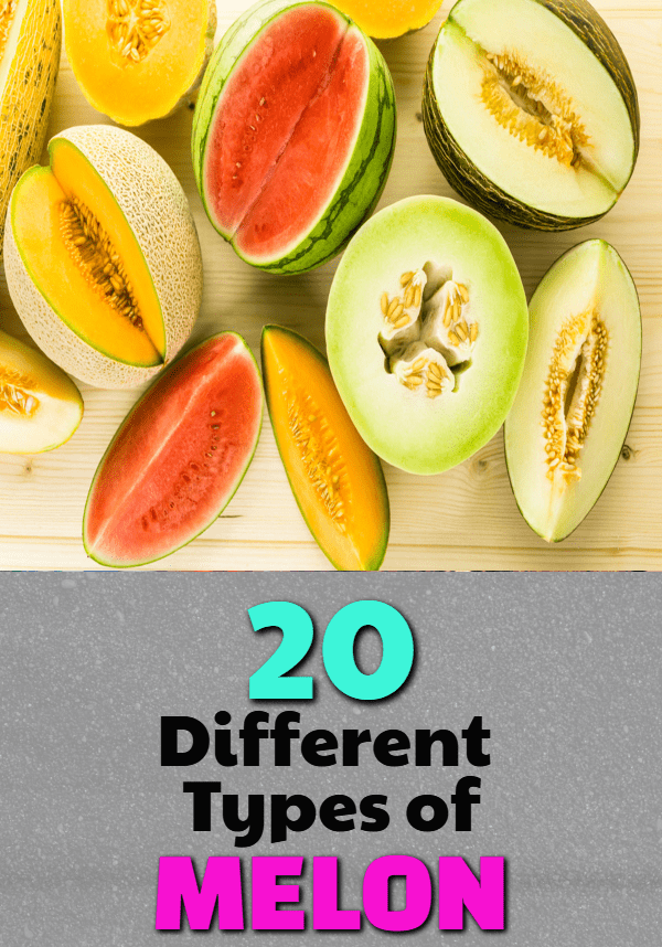 different types of melons